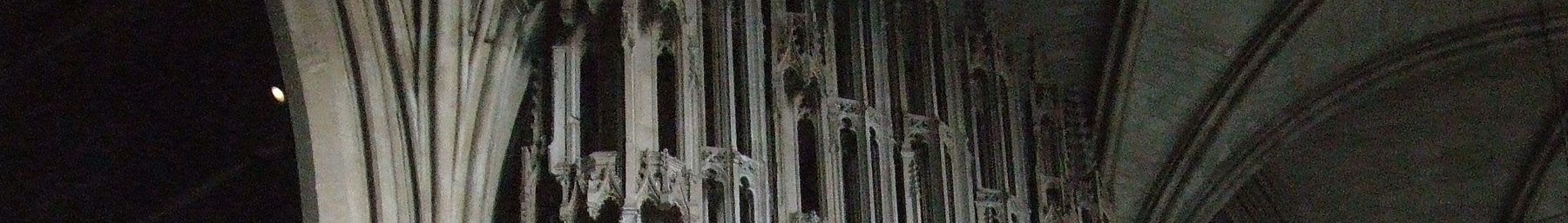 WV banner Winchester cathedral ceiling.jpg