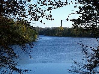 Wałcz - Lake Raduń view from beechwood forest