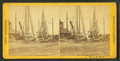Walnut St. Wharf, from Robert N. Dennis collection of stereoscopic views.png