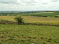 Warren Lane to the A61 - geograph.org.uk - 430865.jpg