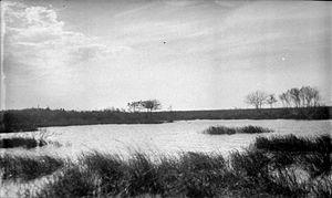 Wetland conservation - Wetland