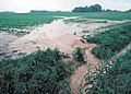 Water flows off a farm in Tennessee following a storm.jpg