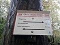 Wegweiser Karstwanderweg zwischen Steigerthal und Kalkhuette (Ghs Kalkhuette 0,8 km).jpg