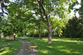 Weilburgpark VI.png