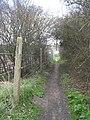 Well Trodden Path - geograph.org.uk - 154795.jpg
