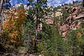 West Fork of Oak Creek Canyon No. 108 (30192689162).jpg