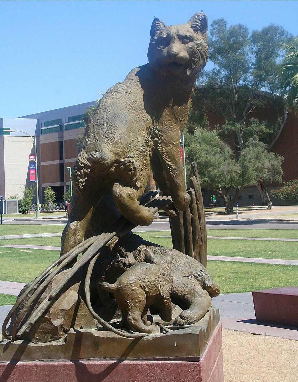 Wildcat Family Statue, University of Arizona