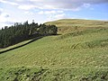 Wiltonburn Hill - geograph.org.uk - 343737.jpg