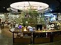 Yanjiyou Bookstore Chengdu IFS-Plants.jpg