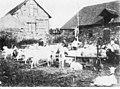 Ziegenmarkt in Praunheim um 1900 im alten Burghof, ecke Graebestraße Alt Praunheim Tankstelle.jpg