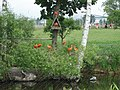 Zoo Tábor-Větrovy, ibis 01.jpg