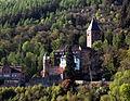 Zwingenberg - Burg Zwingenberg-004.JPG