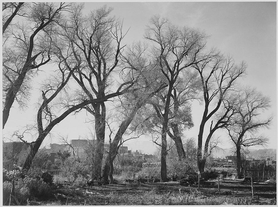 """""""At Taos Pueblo (National Historic Landmark)."""" New Mexico, 1933 - 1942 - NARA - 519986"""