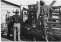 """Handling stock at Wind River Agency"" - NARA - 293428.tif"