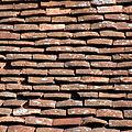 """""""Roof Tiles"""" 5859.jpg"""