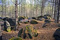 Жуковлянские валуны в лесу.jpg