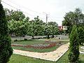 Клумбы на ул. Хользунова - panoramio.jpg