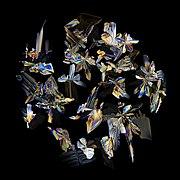 Кристаллы в высохшей капле Кока-Колы.jpg