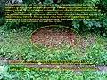 Невская Дубровка, август 2011 года. Нечистоты из канализации у дома ул. Томилина 3 - panoramio.jpg