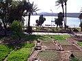 Огороды на центральном пляже - panoramio.jpg