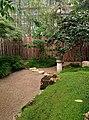 Оранжерейный японский садик.jpg