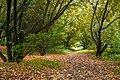 Осень. - panoramio (1).jpg