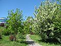 Парк «Слави» IMG 6557.jpg