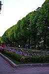 Парк имени Горького в Москве. Фото 20.jpg