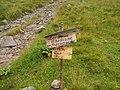 Полонина Веснарка (поблизу озера Марічейка) 5.jpg