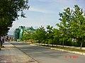 Приморско 2011 - panoramio (8).jpg