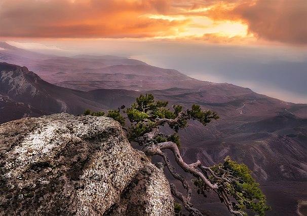 9 місце. Урочище Демерджі на світанку. © Анастасія Сак