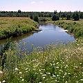 Река Аспа. Уинский район, Пермский край - panoramio.jpg