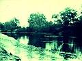 Річка Ворскла біля села Писарівщина.jpg