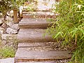 בית הפסטור שניידר מדרגות בחצר מרכז הכרמל התשבי 130 חיפה.JPG
