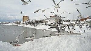 Tonekabon - Image: چشمه کیله در برف