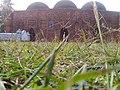 খেরুয়া মসজিদ, শেরপুর.jpg