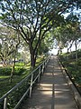 เส้นทางเดินขึ้นชมสะพาน - panoramio.jpg