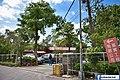 【新北美食】五葉松庭園餐廳 (30246703156).jpg
