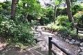 つつじヶ丘公園(らんせん池) - panoramio (4).jpg