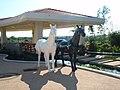 咖啡吧门口的黑白二马雕塑 - panoramio.jpg