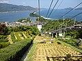 天橋立ビューランド - panoramio (21).jpg