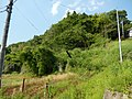 石神神社 登り口 Entracne of Ishigami Shrine - panoramio.jpg