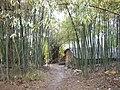 竹林小屋 - panoramio.jpg