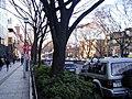 表参道 - panoramio - kcomiida (1).jpg