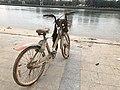 被污染的共享单车 2019-02-13 125707.jpg
