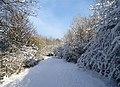 -2021-01-09 Heavy snow, Consett & Sunderland Railway Path, Durham.jpg