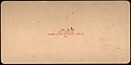 -Group of 42 Stereograph Views of Alaska Including the Gold Rush- MET DP72343.jpg