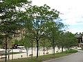 009 Parc de Vallparadís (Terrassa), sota el pont del Passeig.jpg