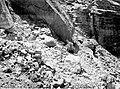 01238 Grand Canyon Historic Topocoba HIlltop Trail1940 (6709759569).jpg