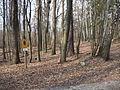 05-04-03-plagefenn-by-RalfR-38.jpg